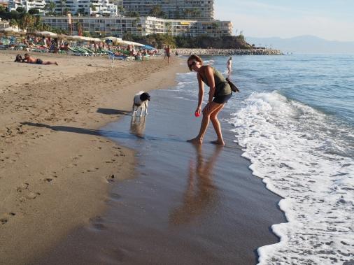 Edelläni aamulenkillä rantaviivaa pitkin kulkeva nainen ja hänen iloinen koiransa.